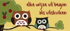 wijzeuil